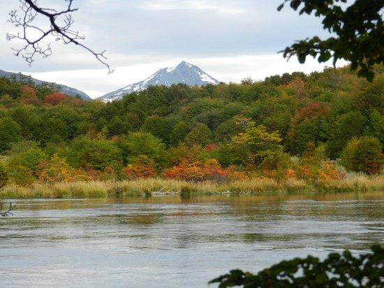 Lago Roca: Otra vista