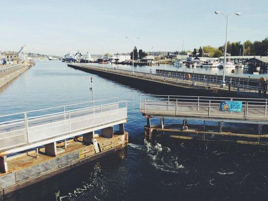 Argosy Cruises - Seattle Waterfront : locks