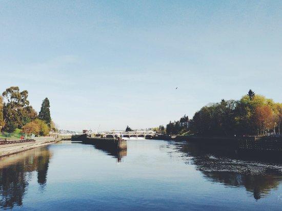 Argosy Cruises - Seattle Waterfront : towards the locks