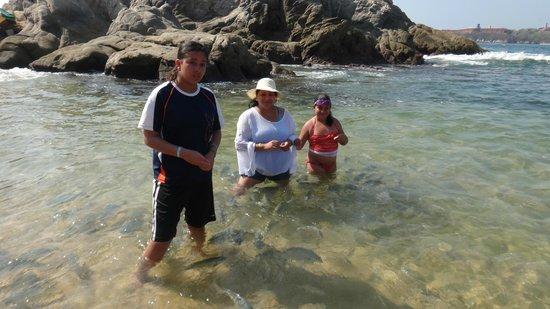 Tangolundas alimentando a los peces en Tangolunda