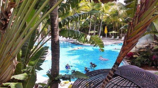 The Inn at Key West: Lush beautiful pool
