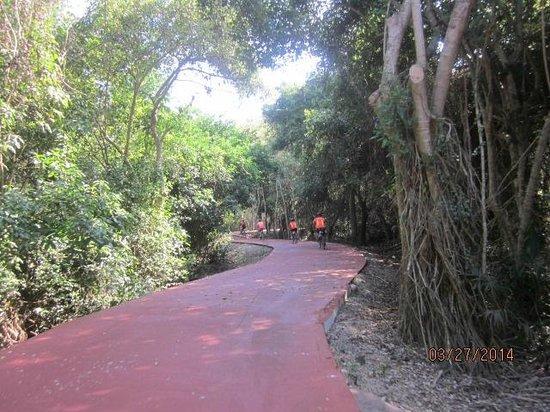 Azul Ixtapa Grand Spa & Convention Center : Bike Path you take on Bike Tour