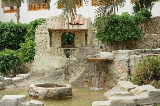 Royal Grand Sharm Hotel: Водопад