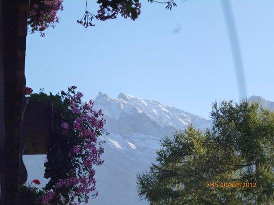Sardona Hotel: View from room balcony