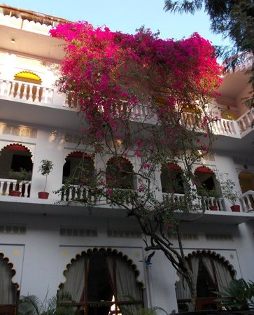 Lake Pichola Hotel : Beautiful Boganvillia cascade on side of hotel. Stunning.