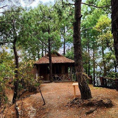 Park Woods Shoghi: Bamboo Hut No. 004