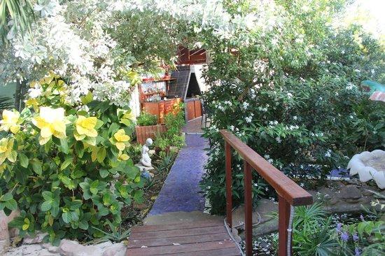 Villa Sunflower: grounds