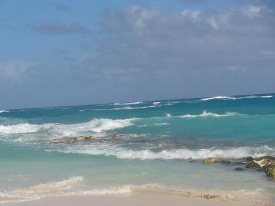 Grand Bahia Principe Punta Cana: wild beach