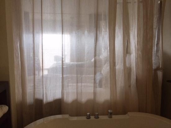"Secrets St James : the bathroom ""wall"""