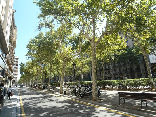 Acta Antibes : Avenida paralela ao hotel