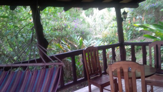 Rancho Margot: lovely jungle outside our bungelow balcony