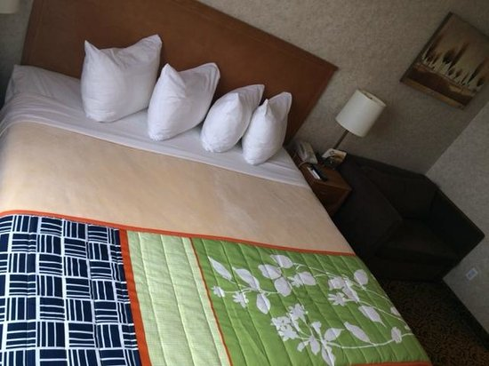 Quality Inn & Suites: updated decor, but not even basic housekeeping was done