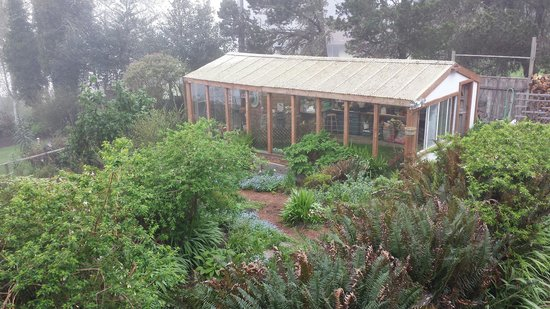 The Lost Whale Inn: View of the greenhouse and garden from the Sea Lion room.