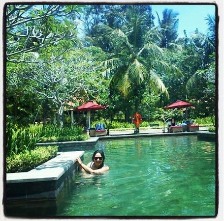 Sheraton Mustika Yogyakarta Resort and Spa : Lovely Green Pool