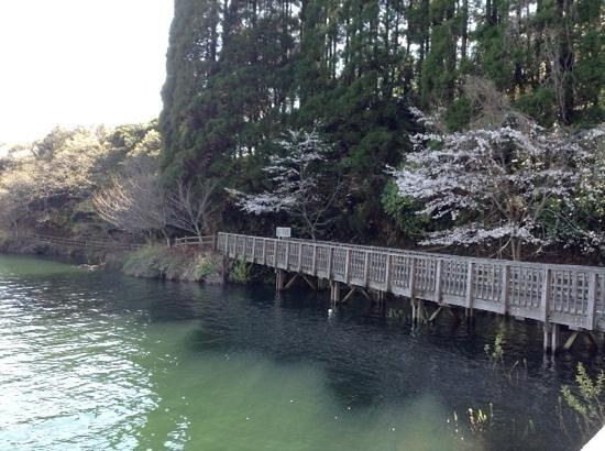 池 公園 中 小