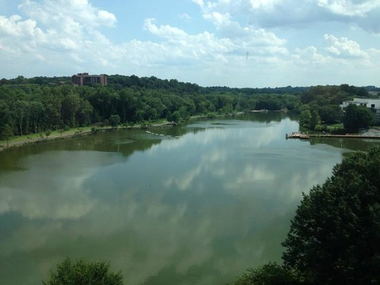 Sheraton Columbia Town Center Hotel: The beautiful lake view