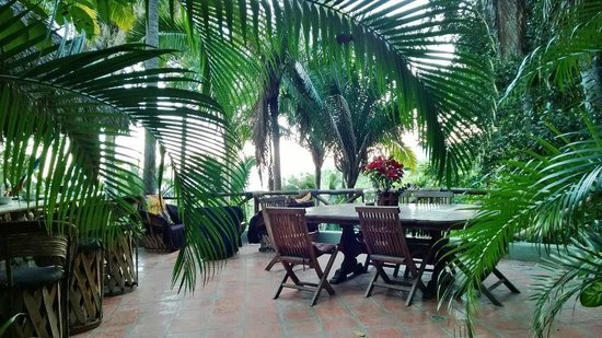 Tailwind Jungle Lodge : This is your dining room in Palapa Tigre!