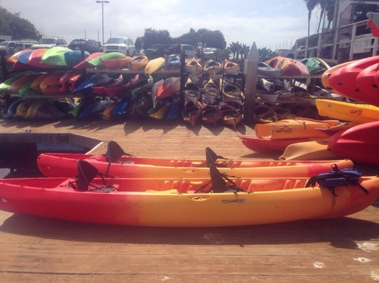 Aqua Adventures Kayaks & Paddleboards