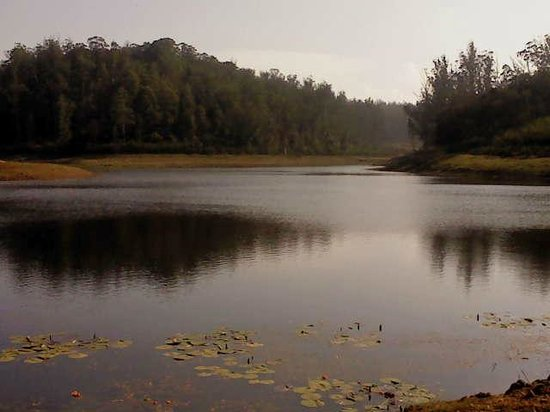 Sabol holiday resorts ooty hotel reviews photos rate - Best hotels in ooty with swimming pool ...