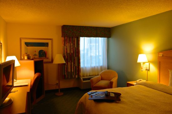 Hampton By Hilton Miami-Coconut Grove/Coral Gables: Zimmeransicht