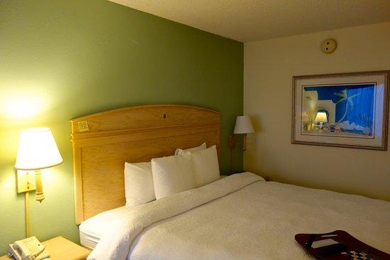 Hampton By Hilton Miami-Coconut Grove/Coral Gables: Doppelbett