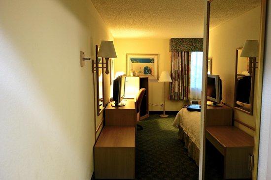 Hampton By Hilton Miami-Coconut Grove/Coral Gables: Blick von der Eingangstür in's Zimmer