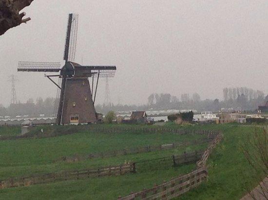 写真De Zonnehoed枚