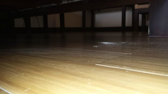 Baan Laimai Beach Resort: termites 30 minutes after room was cleaned