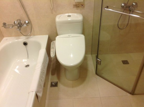 Taipei Gala Hotel: Clean but congested toilet