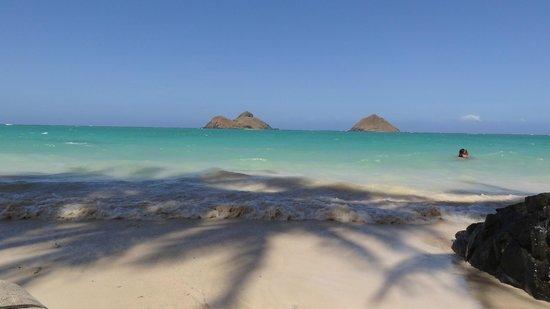 Lanikai Beach: 9番目の小道は絶景ポイント!モクルア・アイランド2島が正面