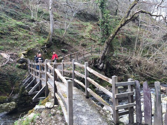 Aber Falls: Crossing the bridge at the start of the walk