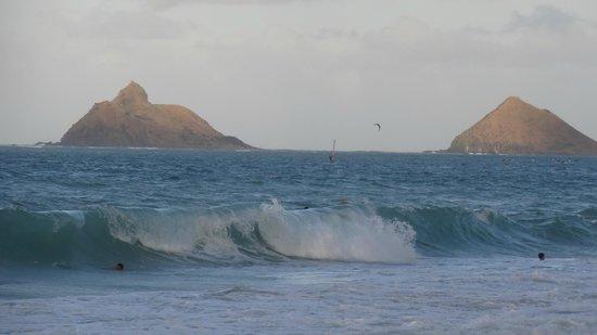 Lanikai Beach: 風が強いと波もけっこう高いので要注意!