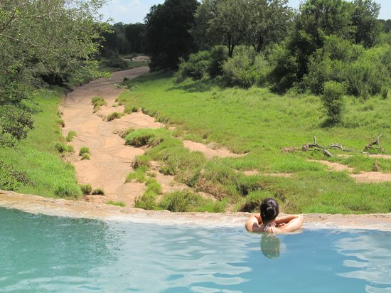 Garonga Safari Camp: View from the pool