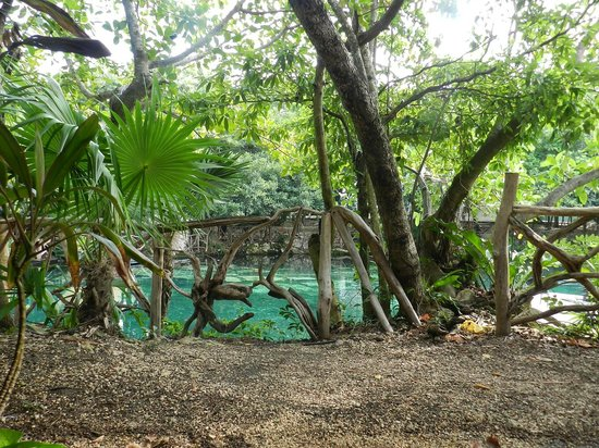 Sandos Caracol Eco Resort : Территория (Лобби)