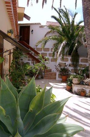 Casa El Traspatio: Patio Solarium