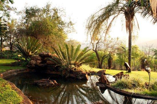 Tamboti Ridge Bed & Breakfast : Rock pools in the subtropical garden
