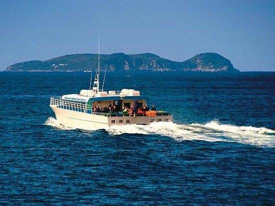 Stewart Island Lodge: Stewart Island Ferry catamaran