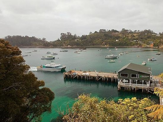 Stewart Island Lodge: Ferry arriving in Oban, Stewart Island