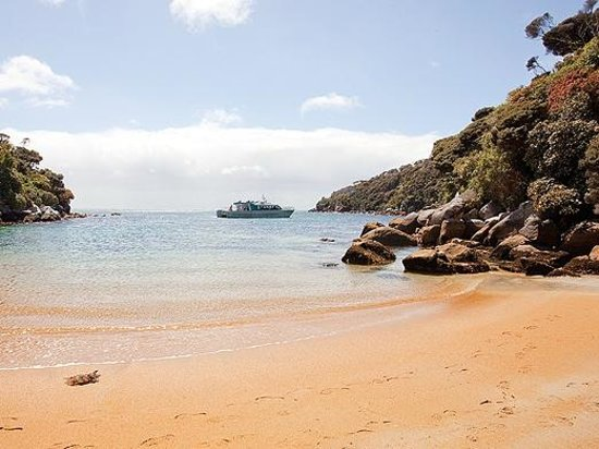Stewart Island Lodge: Beautiful Harrold Bay, Stewart Island