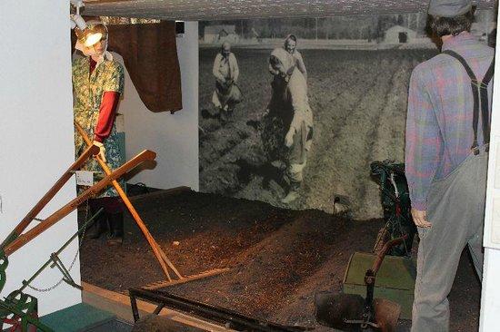 Eichenau, Tyskland: Damals ... Frauen auf den Feldern