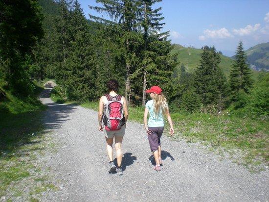 Ausflugsparadies Klewenalp-Stockhüette