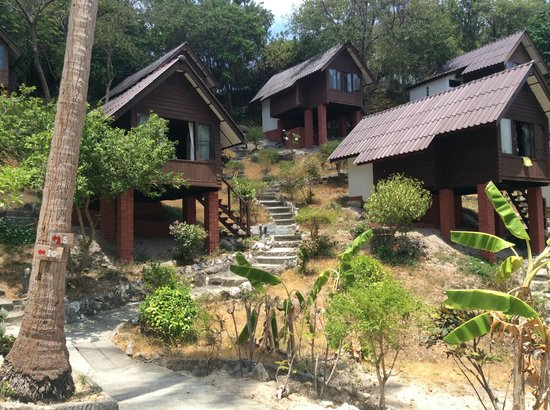 Coral View Resort Thailand: bungalows for 800/fan