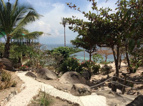Coral View Resort Thailand: garden