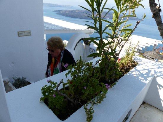 Dana Villas Hotel & Suites: Terrasse