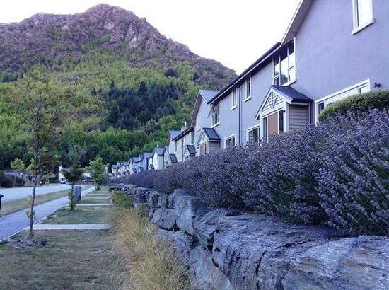 Arrowfield Apartments: Lavender Blooms