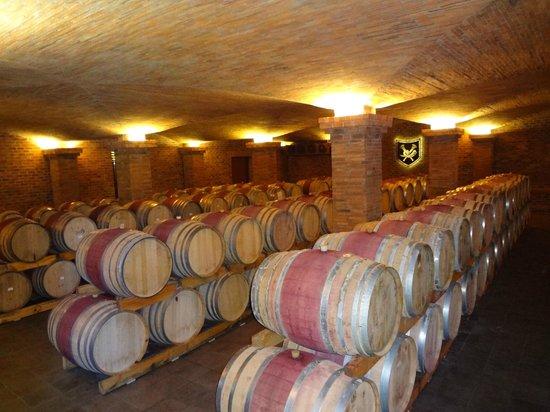 La Motte Wine Estate : Stunning Cellar