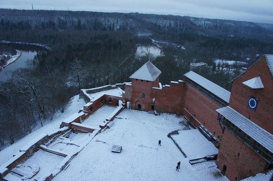 Turaida Castle: Вид сверху