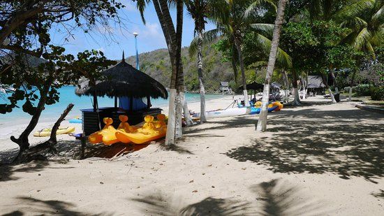 Tamarind Beach Hotel & Yacht Club: Beach, pedals, etc