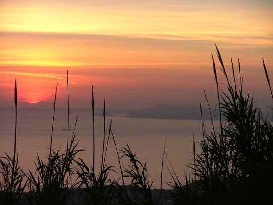 Agrituristica La Ginestra: panorama