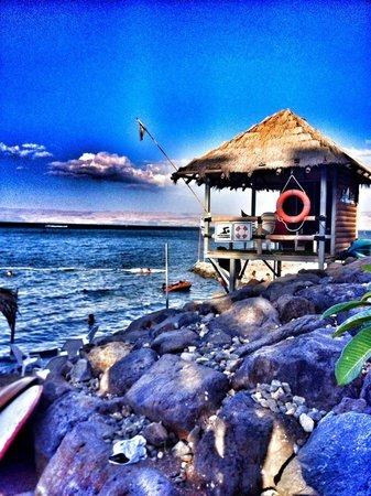 Bora Bora Beach Bar: BORA BORA